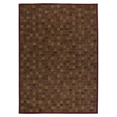 Hand-Woven Burgundy Area Rug Rug Size: 53 x 77