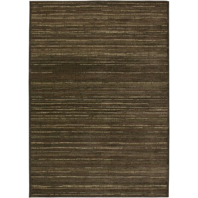 Hand-Woven Brown Area Rug Rug Size: Rectangle 4 x 57