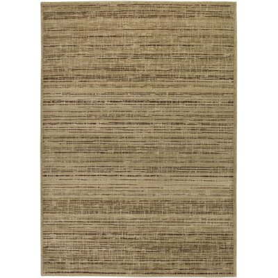 Hand-Woven Gold Area Rug Rug Size: Rectangle 53 x 77