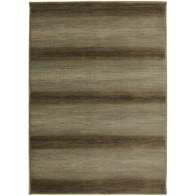 Hand-Woven Gray Area Rug Rug Size: Rectangle 4 x 57