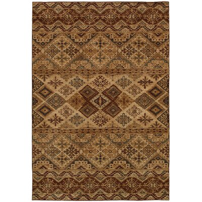 Brown Area Rug Rug Size: 92 x 126