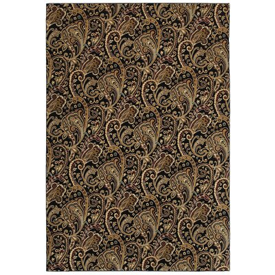 Brown Area Rug Rug Size: Rectangle 910 x 126