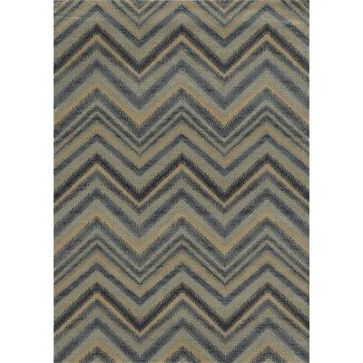 Grey Area Rug Rug Size: 67 x 96