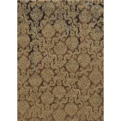 Dark Beige Area Rug Rug Size: Rectangle 53 x 77