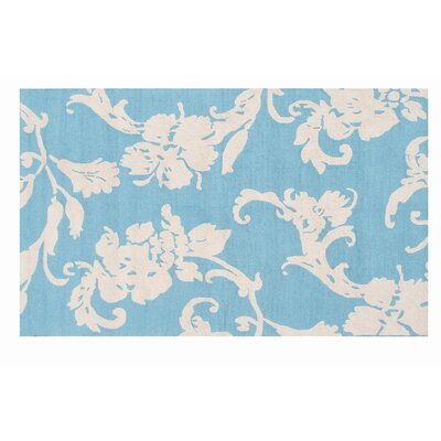 Hand-Woven Blue Outdoor Area Rug Rug Size: Rectangle 5 x 8