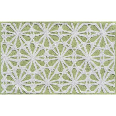 Hand-Hooked Green Area Rug Rug Size: Rectangle 28 x 48