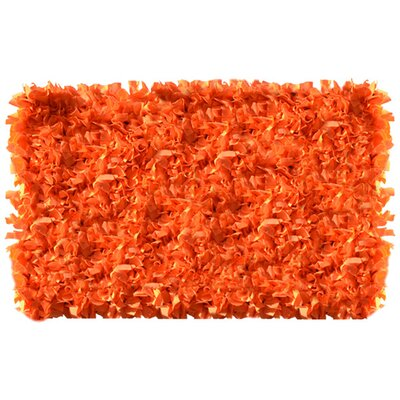Orange Area Rug Rug Size: Rectangle 27 x 47