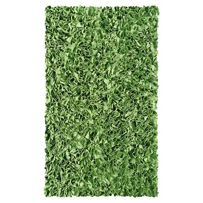 Hand-Woven Green Kids Rug Rug Size: 28 x 48