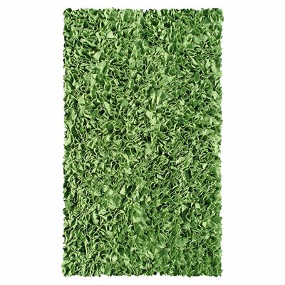 Hand-Woven Green Kids Rug Rug Size: Rectangle 47 x 77