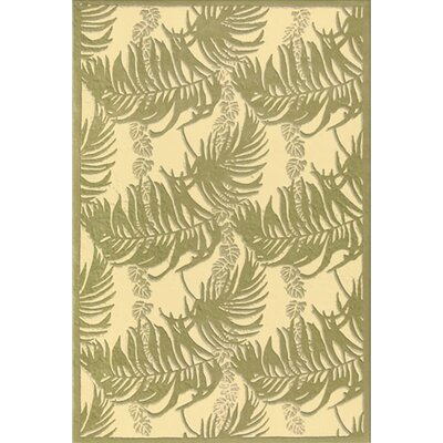 Hand-Tufted Green/Tan Area Rug Rug Size: 36 x 56