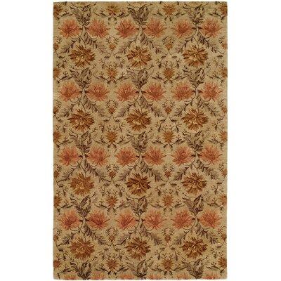 Hand-Tufted Sand Area Rug Rug Size: 36 x 56