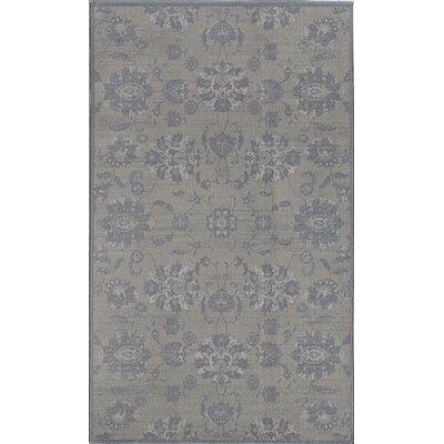 Ivory Area Rug Rug Size: 4 x 6