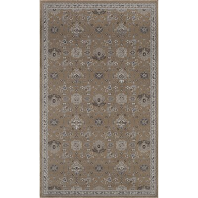 Country Tan Area Rug Rug Size: 4 x 6