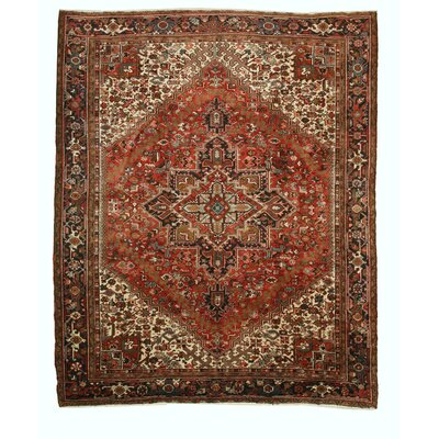 Aren Hand Knotted Rust Area Rug