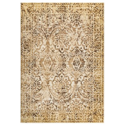 Beige Area Rug Rug Size: Rectangle 53 x 77