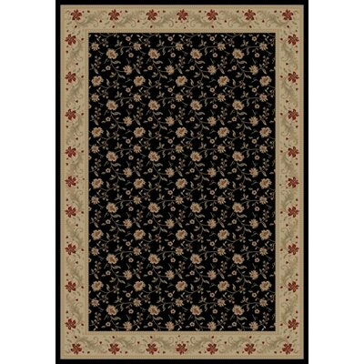 Black Serenity Area Rug Rug Size: Rectangle 53 x 77