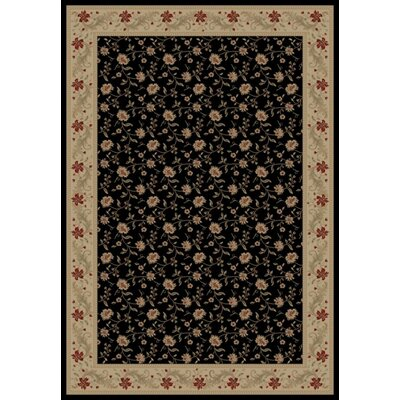 Black Serenity Area Rug Rug Size: 53 x 77