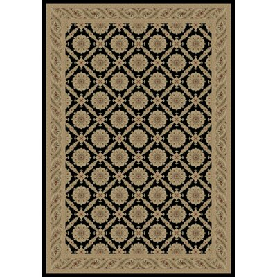 Black Charlemagne Aubusson Area Rug Rug Size: 53 x 77