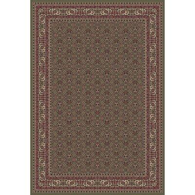 Persian Classics Herati Green Rug Rug Size: 53 x 77