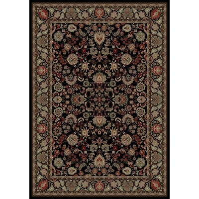 Persian Classics Oriental Mahal Black Area Rug Rug Size: Rectangle 67 x 96