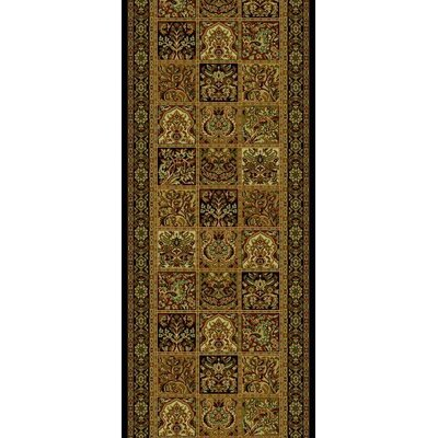 Persian Classics Oriental Panel Area Rug Rug Size: Runner 2 x 77
