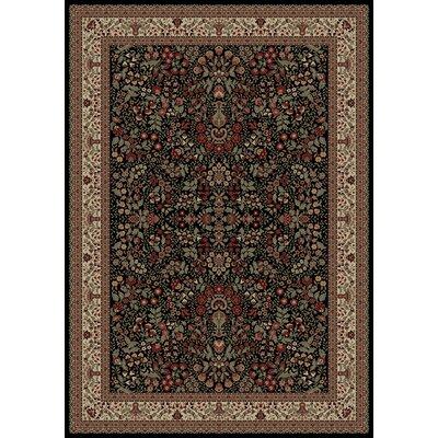 Persian Classics Oriental Sarouk Area Rug Rug Size: 67 x 96