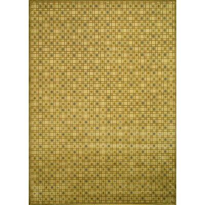 Chessboard Tonel Contemporary Rug Rug Size: Rectangle 53 x 73