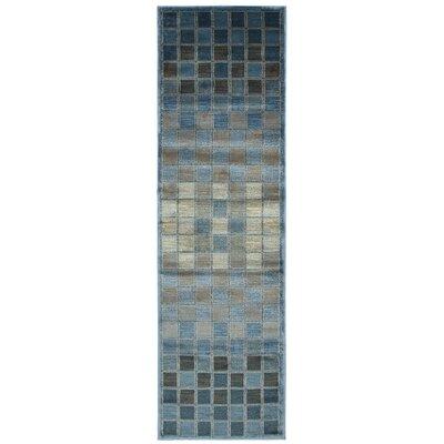 Blue/Grey Area Rug Rug Size: Runner 2'3
