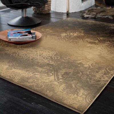 Faded Metal Pewter Area Rug Rug Size: 710 x 1010