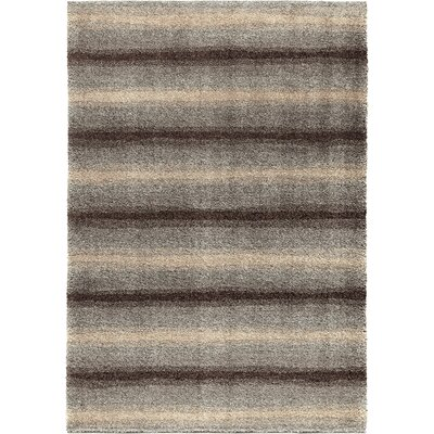 Connection Gray Area Rug Rug Size: 5'3