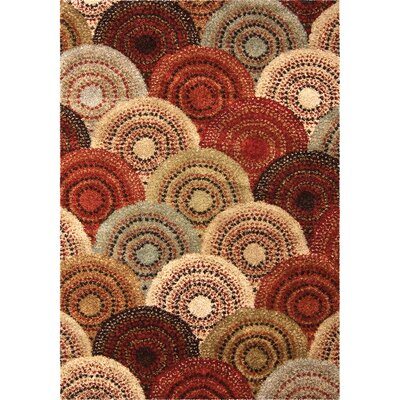 Lever Area Rug Rug Size: 53 x 76