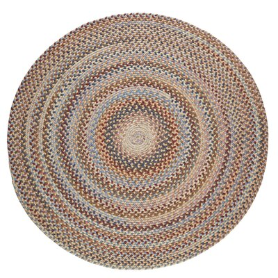 Handmade Orange Area Rug Rug Size: Round 8