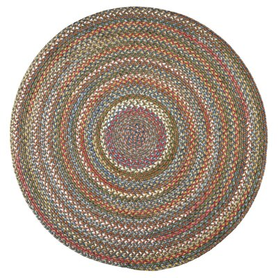 Handmade Bronze Indoor/Outdoor Area Rug Rug Size: Round 6'