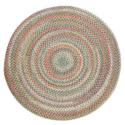 Handmade Indoor/Outdoor Rug Rug Size: Round 6
