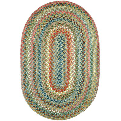 Handmade Peridot Indoor/Outdoor Area Rug Rug Size: Oval 4 x 6