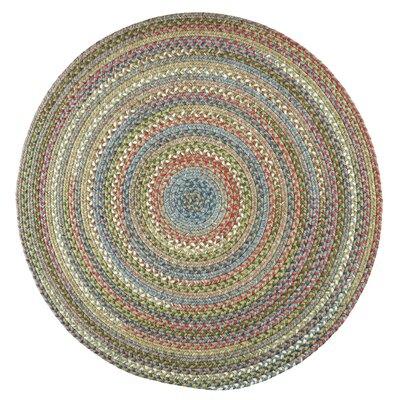 Handmade Peridot Indoor/Outdoor Area Rug Rug Size: Round 8