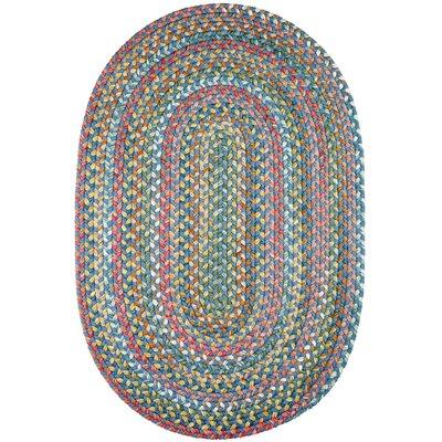 Handmade Sapphire Indoor/Outdoor Area Rug Rug Size: Oval 2 x 3