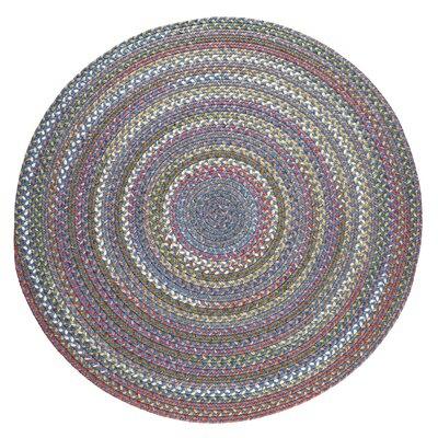 Handmade Sapphire Indoor/Outdoor Area Rug Rug Size: Round 6