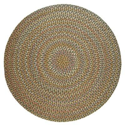 Handmade Dark Taupe Indoor/Outdoor Area Rug Rug Size: Round 6