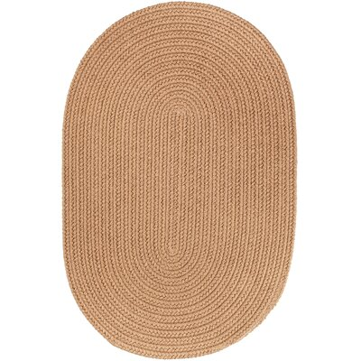 Handmade Camel Indoor/Outdoor Area Rug1 Rug Size: Oval 4 x 6