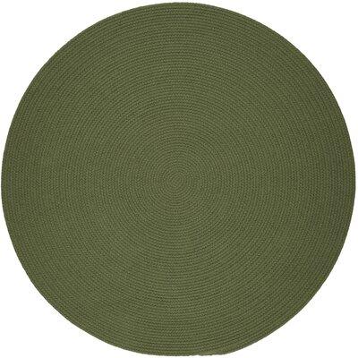 Handmade Olive Indoor/Outdoor Area Rug Rug Size: Round 4