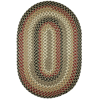 Handmade Indoor/Outdoor Area Rug Rug Size: Oval 5 x 8
