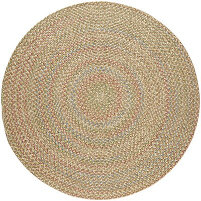 Camel Indoor/Outdoor Area Rug Rug Size: Round 8