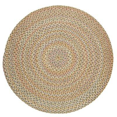 Handmade Beige Indoor/Outdoor Area Rug Rug Size: Round 6
