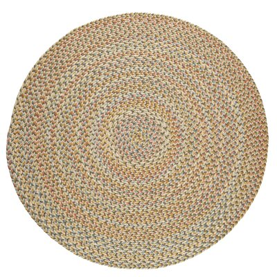 Handmade Beige Indoor/Outdoor Area Rug Rug Size: Round 4