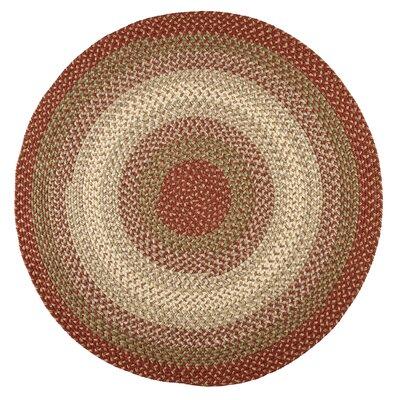Handmade Indoor/Outdoor Area Rug Rug Size: Round 6