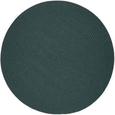 Handmade Teal Indoor/Outdoor Area Rug Rug Size: Round 10