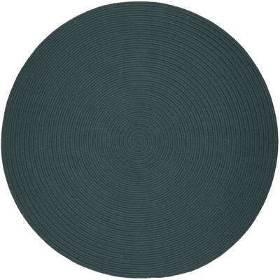 Handmade Teal Indoor/Outdoor Area Rug Rug Size: Round 6