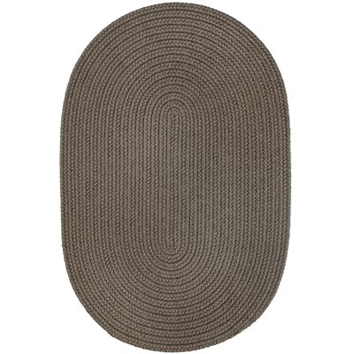 Handmade Gray Indoor/Outdoor Area Rug Rug Size: Oval 2 x 3
