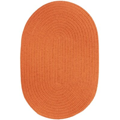 Handmade Mango Indoor/Outdoor Area Rug Rug Size: Oval  7 x 9